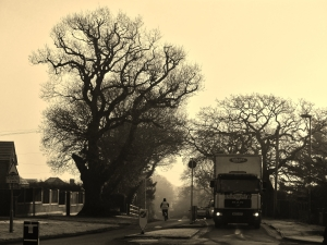 A frosty Segensworth Road West, Titchfield, at around 9 o'clock this morning...
