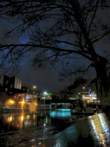 Tree overlooking Camden Lock...